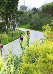 """重庆:改造城市""""秃斑"""" 提升市民幸福感(图)"""