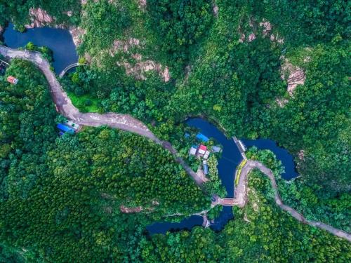 这是7月20日航拍的山东省邹平县鹤伴山森林公园,这里是当地居民生活用水的水源地,也是该县山区小流域水系治理的成果。新华社发(张可荣 摄)