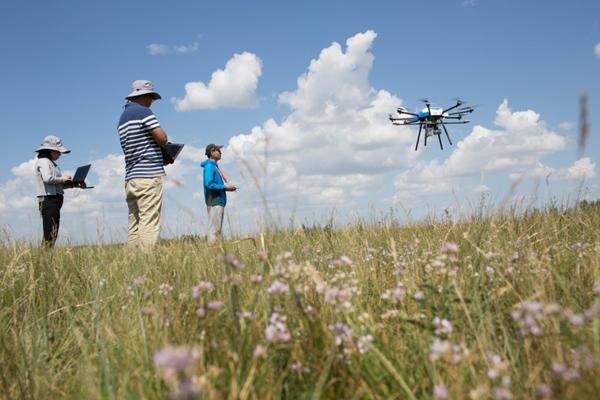 7月29日,在呼伦贝尔农垦集团谢尔塔拉农场的天然草地恢复技术示范区,三名来自中国科学院的科研人员正在用无人机监测草场恢复情况。新华社记者 金立旺 摄