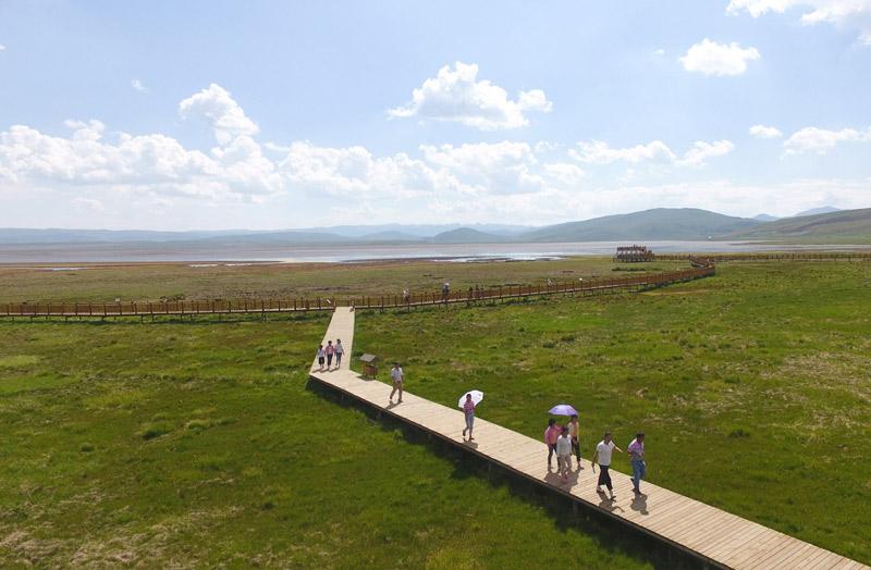 7月18日,游客在甘肃省甘南藏族自治州碌曲县尕海湖湿地游览。