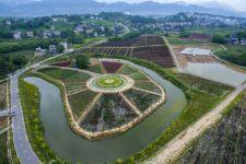 四川省华蓥市禄市镇生态农业观光园航拍的色彩斑斓的花田