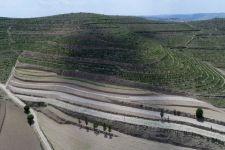 夏日里的黄土高原(图)