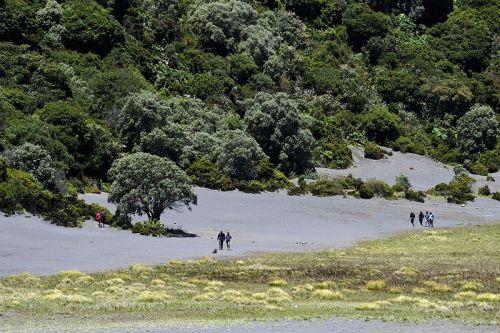 哥斯达黎加国家公园内的游人们