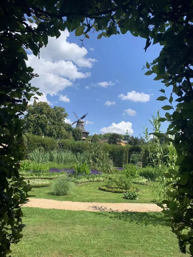 葡萄山为无忧宫著名的梯形园林
