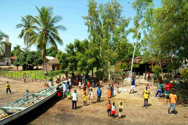 冈比亚河畔的人们