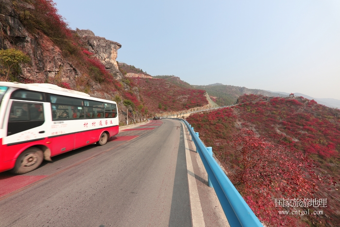 图2:全镇实现客运村村通,客车安畅行驶在美景中   唐探峰摄