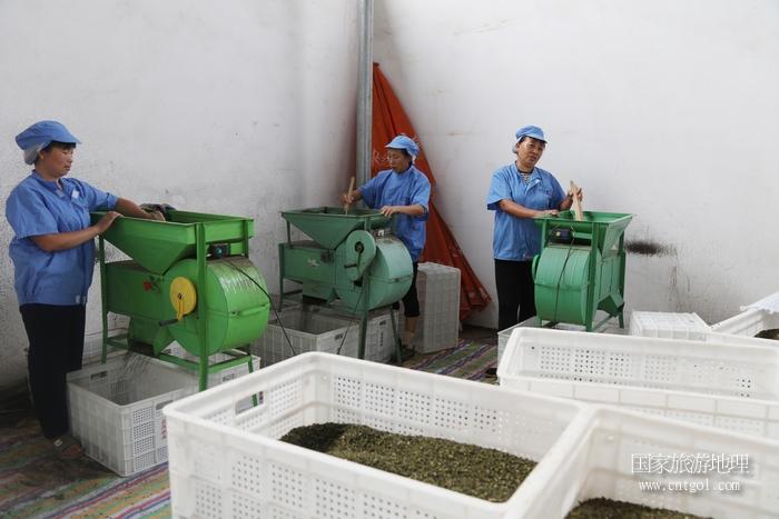 图11:今年花椒丰收,通过加工将销往全国各地  唐探峰摄