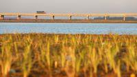 河北石家庄:打造溪流区和生态湖区 滹沱河生态修复二期工程完工