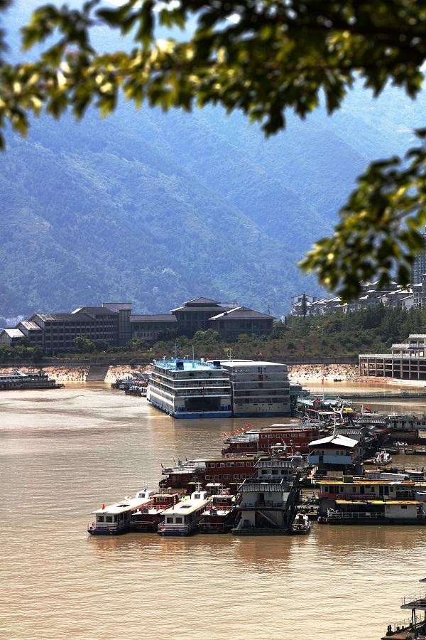 图2:重庆三峡黄金游轮安畅进入巫山港区   唐探峰摄