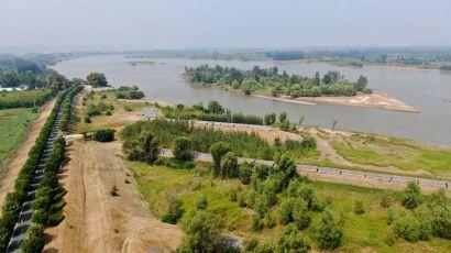 生态中国之河南孟津:黄河湿地群鸟翩跹 (图)