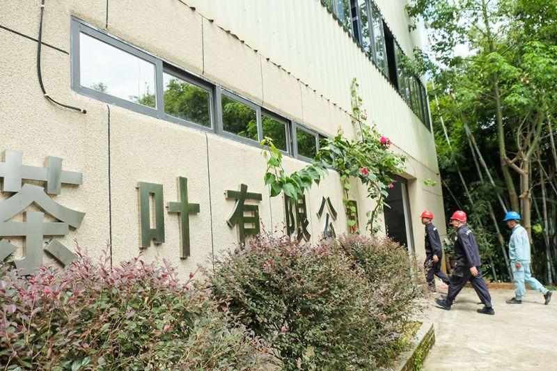 9月16日,在广西梧州市吉祥韵茶叶有限公司,供电党员服务队主动上门了解企业用电情况。(何华文)
