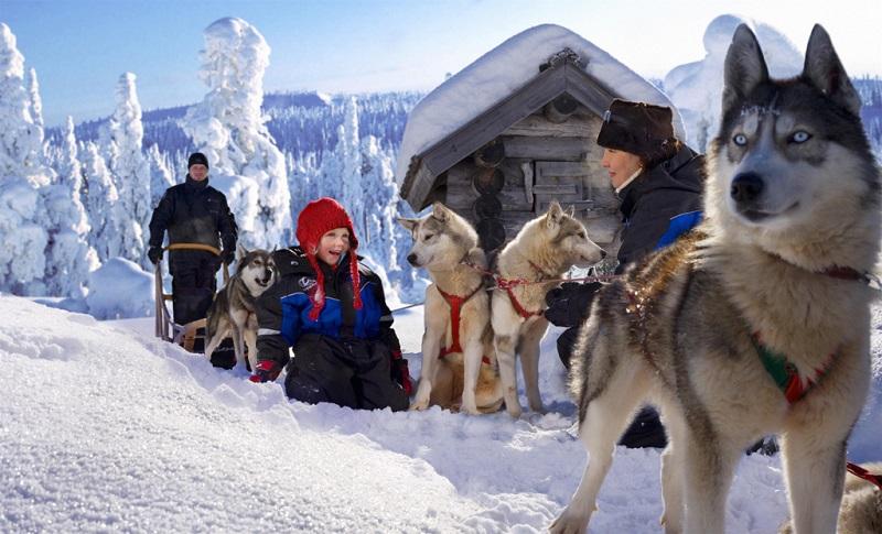 芬兰冬日风情 (2)