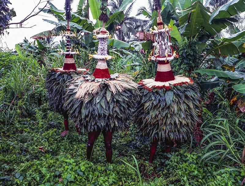 打扮成公鸡的土著人