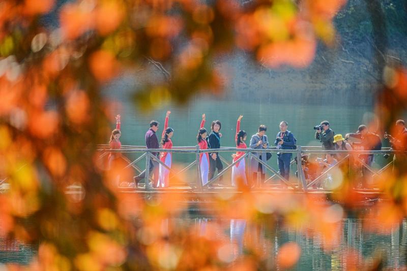 在阳明湖景区,枫叶红艳,摄影师正在拍摄栈桥上练瑜伽的美女们。