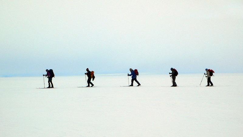 格陵兰雪世界的行者