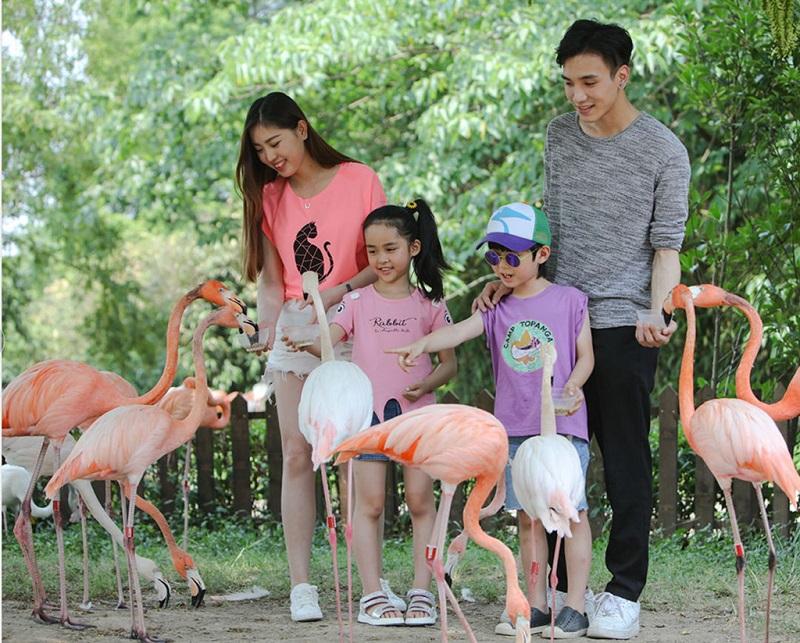 浦东野生动物园内的游人