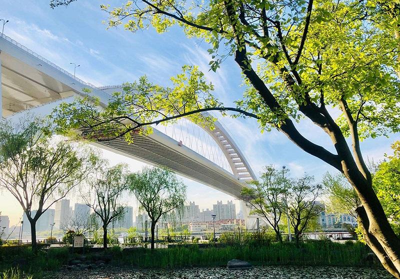 上海世博公园