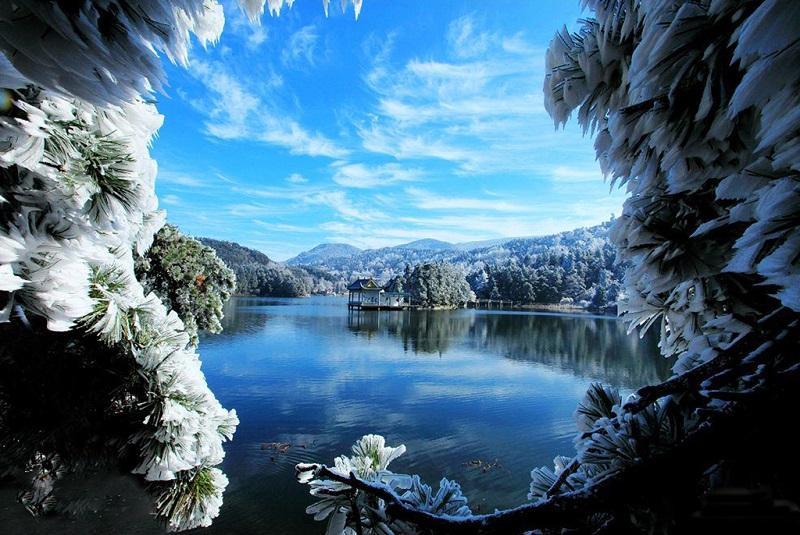 庐山如琴湖秀色