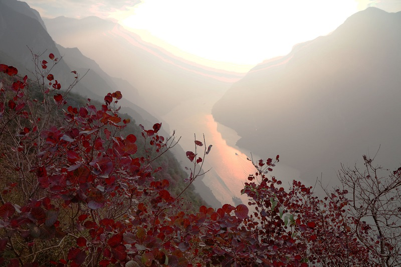 图7:红叶巫峡似仙境   唐探峰摄