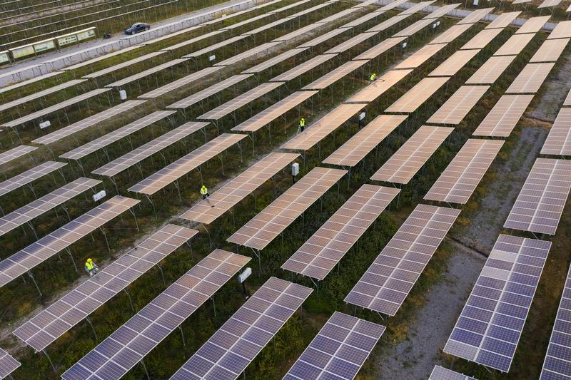 11、2020年12月10日,鸟瞰广西梧州市蒙山县桐油坪工业园区集中式光伏发电项目产业园,整齐的光伏叶片在阳光下闪闪发光,工人们正在清扫叶片。