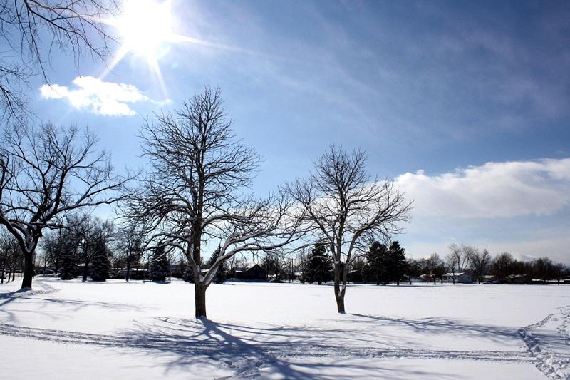 蒙特利尔冰雪美景