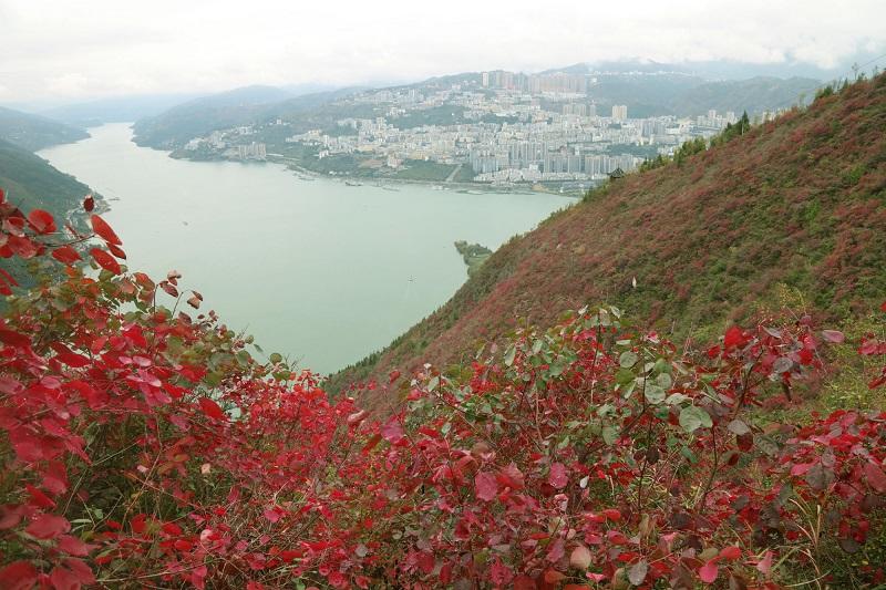 图4:彩霞映红高峡平湖成美景    唐探峰摄于文峰景区
