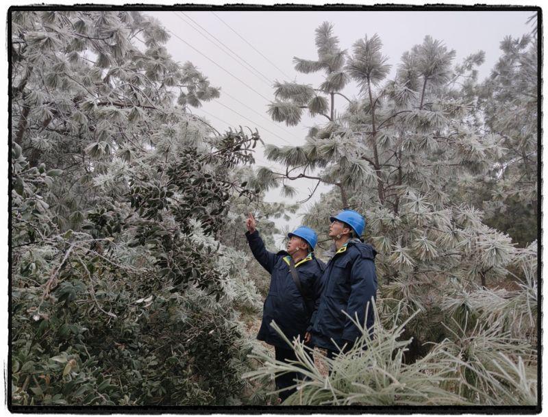 1月9日,输电管理所线路十二班在输电线路观冰点,副班长卢德国结合线路覆冰情况,现场对班组青工方宇讲解线路覆冰类型、折算导线覆冰厚度方法及人工观冰注意事项。(吕文江)