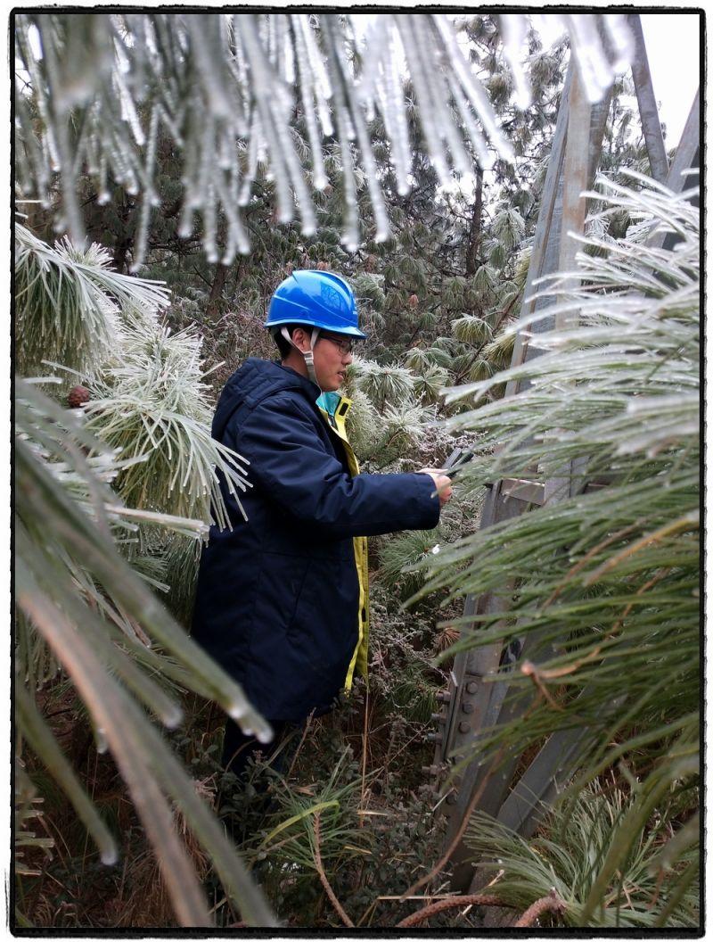 1月8日,电力工人在冰雪密林中对220千伏多者Ⅱ回线开展观冰工作。(薛峰)
