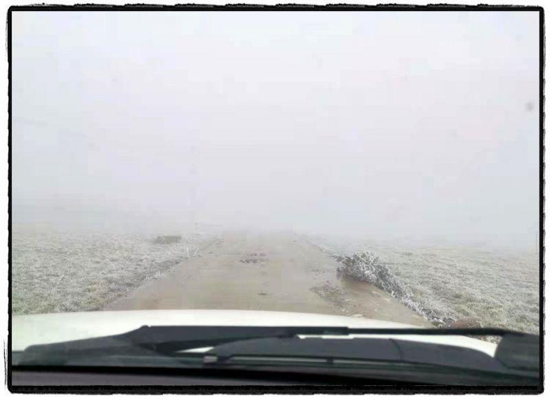 电力工程车穿梭在山路中,低温天气下,雾气缭绕,道路能见度极低。(杨小明)