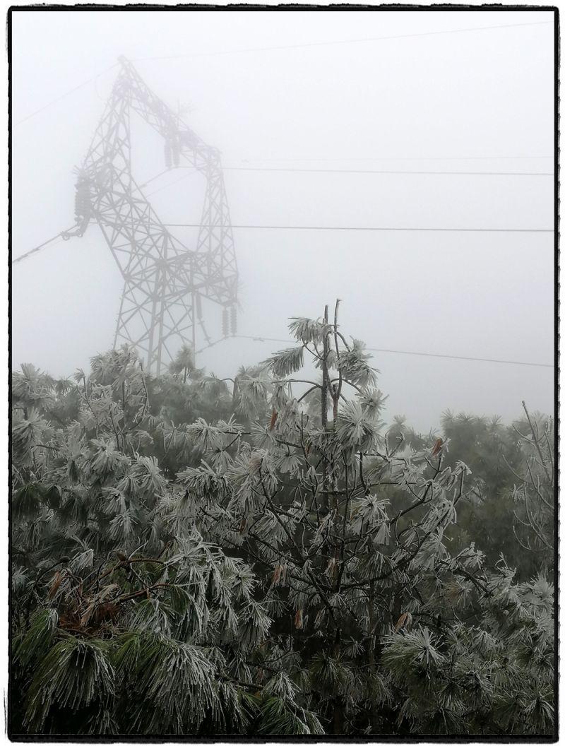 寒潮来袭,电网线路速冻。(冯小兰)