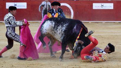 西班牙国粹-斗牛(图)