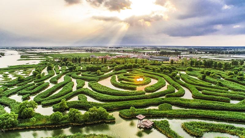 世界上最大的水上迷宫-大纵湖芦苇迷宫