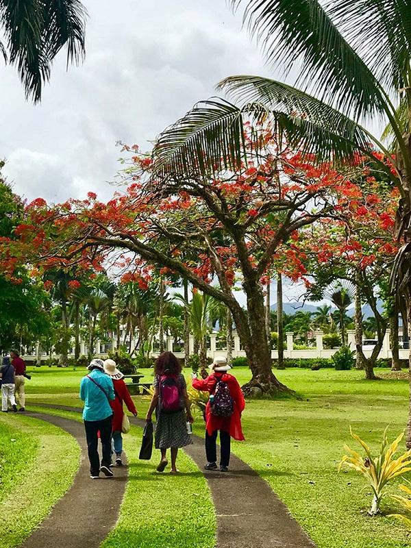 花园之城--首都苏瓦