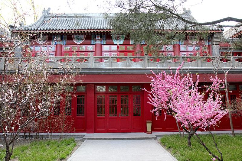 北京大学静园春色