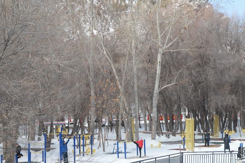 正在公园做运动的市民