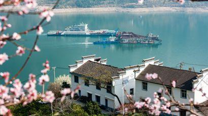 春日三峡,桃花盛开,江水碧绿,船舶往来如梭