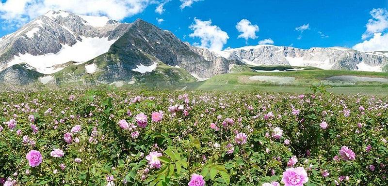 被誉为上帝的后花园的保加利亚