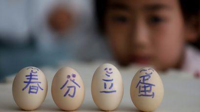 甘肃平凉:春分立蛋(图)