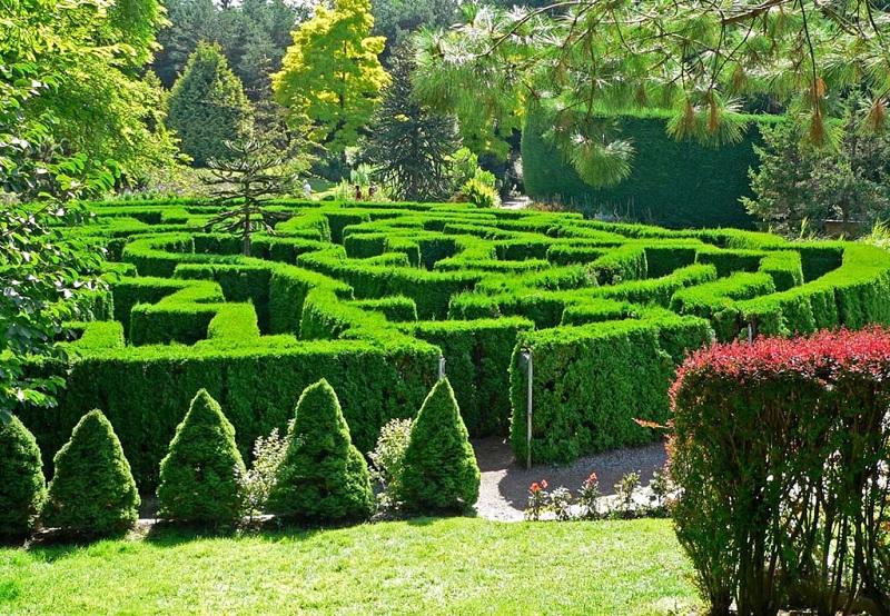 温哥华绿色迷宫
