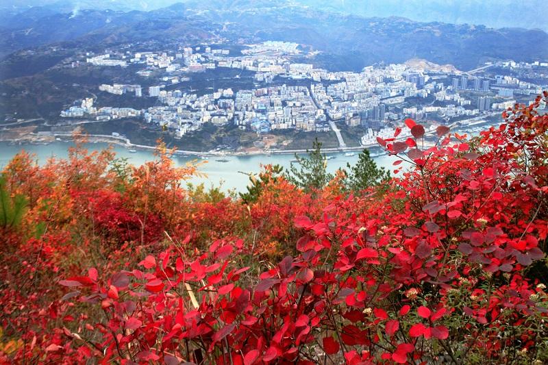 图11:县城披彩霞。唐探峰摄于巫山县城。