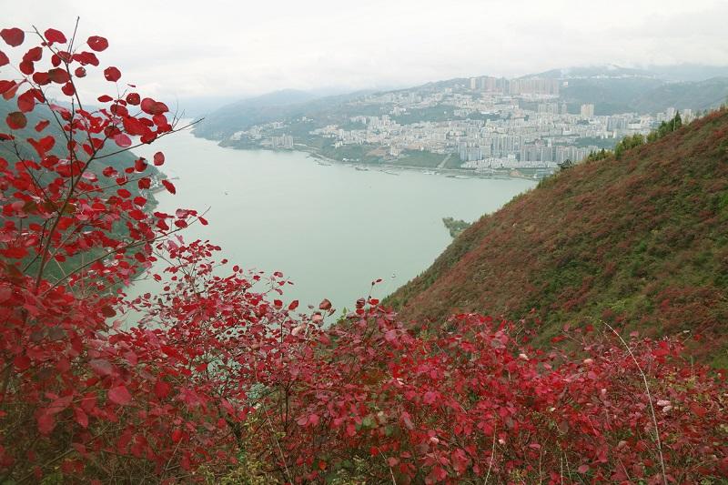 图12:县城平湖东韵。唐探峰摄于巫山县城文峰景区。