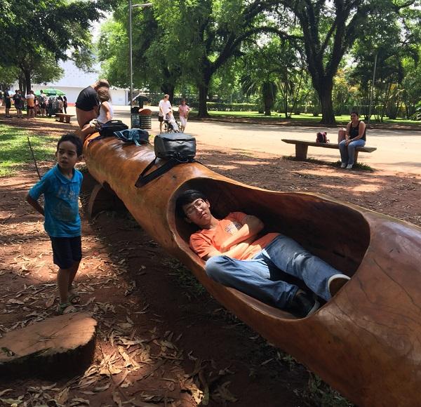 圣保罗之肺-伊比拉布公园小歇