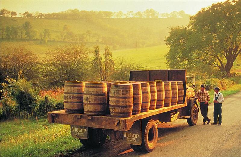 波尔多葡萄酒桶