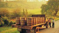 法国波尔多——世界美酒之乡(图)