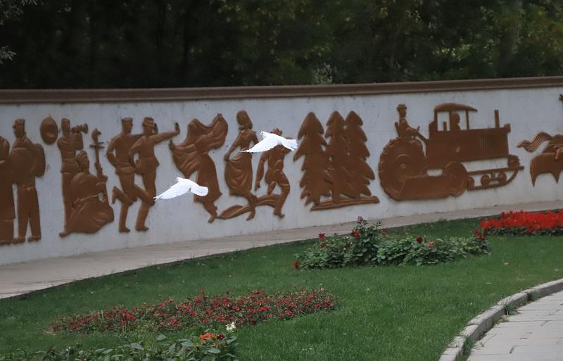两只在雕塑墙前盘旋的鸽子
