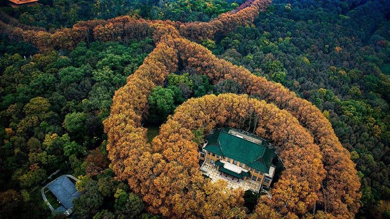 紫金之宫--美龄宫
