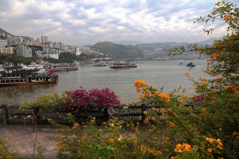 图3:10月2日,繁忙的巫山港口码头。唐探峰