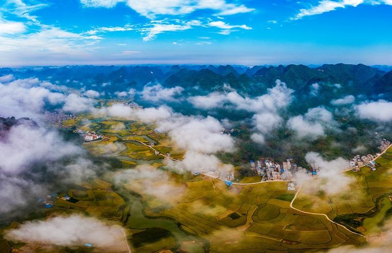 2、2021年10月2日,广西百色靖西市禄垌镇平江村云雾缭绕与一片片金黄色的稻田、河流、民房以及喀斯特地貌相映成趣,成为了这个季节最靓丽的风景线。(何华文)