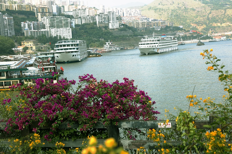 图4:国庆黄金周又一游轮安畅驶入美丽的巫山旅游码头。摄于重庆巫山旅游码头。唐探峰