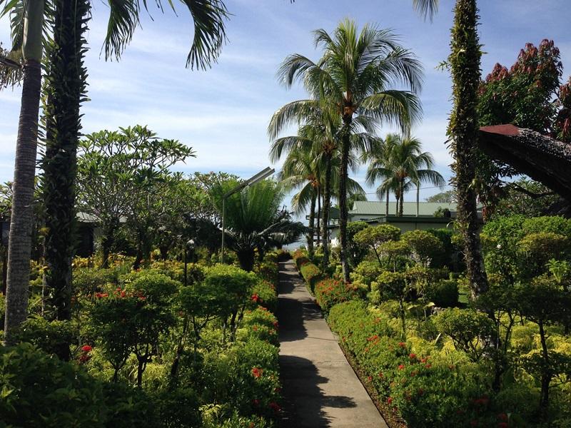 生态绿色的国度-巴布亚新几内亚